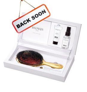 Golden Spa Brush Set 1 Back Soon Web